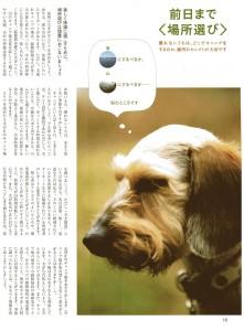 magazinDF004w800