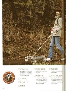 magazinDF012w400
