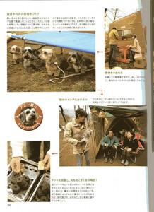 magazinDF016w400