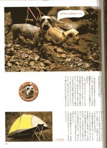 magazinDF028w400