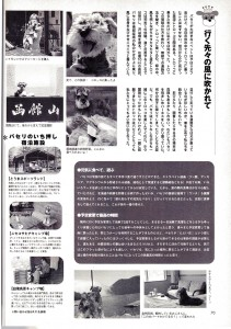 magazinesAC0110-3w800