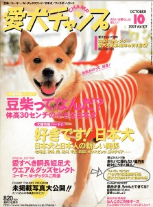 magazinesAC0110w800
