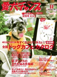 magazinesAC0111-1w800