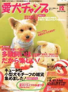 magazinesAC0112w800