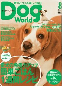 magazinesDW0408w800