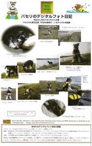 magazineswan9806w800